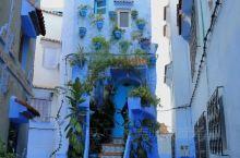 去过了希腊的圣托里尼,去过突尼斯的西迪•布•赛义德,世界上三大蓝白小镇就差这个摩洛哥的舍夫沙万了。走