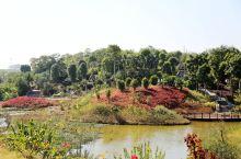 广西壮族自治区钦州园博园,位于钦州市东部,四季如春,植被丰满,广西的各个城市特色在园博园里都能看见。