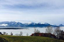 利用周末 去了一趟天鹅堡    冬天的人很少 景色又冷又漂亮       路边随手拍的照片 远处的阿