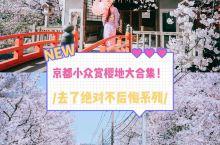 京都 9个小众赏樱地,收藏它,这个春季就粗发  春季去日本赏樱是爱花之人赏花清单里重要的一笔,而日本
