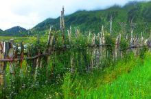 美丽的藏东南