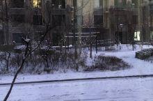 东北的雪景