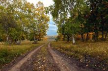 乌兰布统之草原天路。步入蓝天之下的草原秋色之中,最震撼人心的是一条条铺满落叶的草原乡间小径;落叶金黄