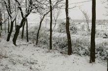 家乡的雪,千里冰封,万里雪飘。看北国的风光,这样的天气正好适合在家里好好休息,吃吃喝喝,烤烤炉子,不