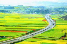 罗源金灿灿的油菜花与蓝天、白云、青山掩映为一体,自然田园风光汇成了一幅金黄色的画卷。站在油菜花基地旁