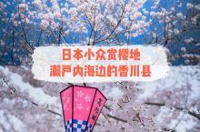 日本小众赏樱地   濑户内海边的香川县 もし、桜の落ちるスピードは毎秒5センチメートル、そんなに2つ