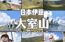 日本小众景点伊豆大室山 动漫电影《你的名字》陨石坑原型地,⛰️ 🍵【亮点特色】 山体平地而起,像一座