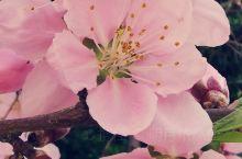 花花的世界! 鹤壁·河南