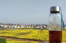 很多人都以为汉中当中最好看的油菜花还是在洋县,其实并不是这样子的,这边的油菜花是挺多,但是汉中会根据
