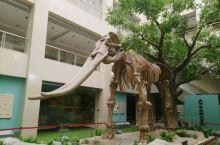 庆阳市博物馆