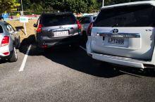 连接新西兰北岛的皮克斯码头,非常有意思,这是南岛的主要码头顶停车场,很拥挤,一早去都有很多车,连接的