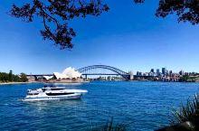 5月澳洲自由行 悉尼·新南威尔士 墨尔本·维多利亚 阿德莱德·南澳大利亚