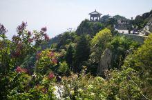 登上泰山之巅,尝一览众山小的滋味。 天公作美,从红门起步开始用脚步丈量泰山的高度。说实话,上山之路修