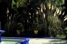 马若雷勒花园