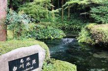 「白水水源」,「上色見熊野座神社」,「黑川溫泉」,「夢·大吊橋」  準備來九州自由行的朋友可以參考一