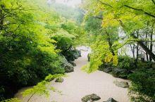 日本一的日式庭院美景,太干净了!