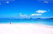 随风摆 随鸟飞 随情舞  蓝天照骇浪,白云煮沙滩; 微风拂海鸟,起舞弄心情。  特色推荐: 海天一色