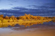 额济纳胡杨林旅游区是胡杨景观最有名的地方。在大漠遇见如此奇观,让人体会到生命的顽强。没有胡杨林,就没