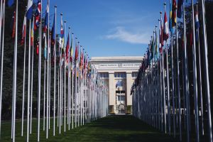 Geneva,Recommendations