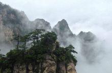 大明山是我国一座山,距黄山70公里,地形高差达一千余米,因而山高谷深,层峦叠嶂,群峰耸立,气势十分壮