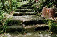 广西金秀圣堂山,很原始的森林公园,人很少,雾大,不建议一个人行走,特别是女孩子。上山3个小时,下山2
