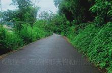 盈江县国家湿地公园