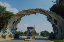东明黄河森林公园是一个湿地公园。山东省农业旅游示范点,位于东明县城区西南30公里处,濒临黄河。是鲁西