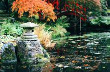 日本美到让人心醉的花园——日本花园中心 日本现在也是一个绿化面积很高的国家了,其实他们也是非常的注重