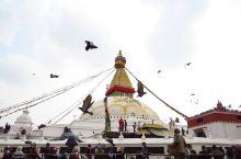 敏敏の旅行札记│藏传佛教的圣地~  博大哈大佛塔,好直接的音译~ 是尼泊尔乃至亚洲最大的 覆钵体半圆
