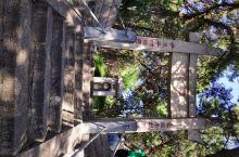 白居易最后生活和长眠的地方,『香山居士』的由来