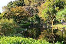"""与民同乐谓之""""偕乐园""""  受人欢迎的乐园 作为日本三大名园之一的偕乐园一直都深受国内外游客的喜爱,无"""