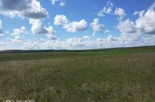 美丽的锡林郭勒盟漂亮的东乌旗大草原