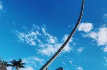 蓝天 白云 森林 海洋 瀑布 牧场 Hana 自驾者的朝圣之路:)