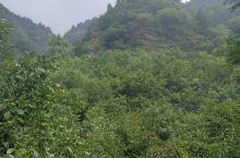 七步沟景区