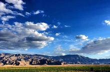 苍凉巍峨昆仑山,山下美酒饮嗨翻,要问土鸡哪里好,打卡颐珍农场来