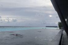 位于水屋附近的无边泳池,景色不错。
