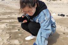 海边捡个小贝壳