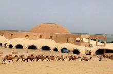 沙漠里的一队骆驼