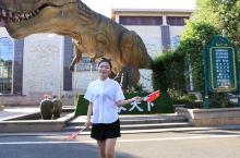 主题乐园   恐龙水世界   (粤东超大水上乐园)  恐龙欢乐世界  (河源首个恐龙主题的游乐区)