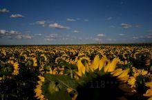内蒙古包头市达茂旗草原适合在夏季七八俩个月去旅游。