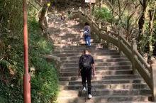 徒步爬佛顶山是一件很考验体力的事情,可以坐缆车上山再徒步下山,下山的地方就在法雨寺旁边。
