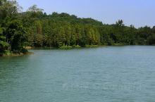 好美的水!好美的石花山公园!  [景观]作为饮用水水源一级保护区,石花山水库名不见经传,却一定能让有