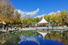 【西藏行记5】宗角䘵康公园  从布达拉宫后山下来后,就是宗角䘵康公园,在山上就已经看到公园的秋色迷人