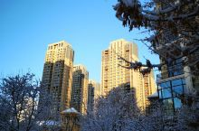 2019年冬沈阳初雪美极了!