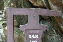 这里是广西钦州八寨沟灵龟池景点。远远听到哗啦啦的流水声,原来是灵龟池,到处在找灵龟,可是水池是有了,
