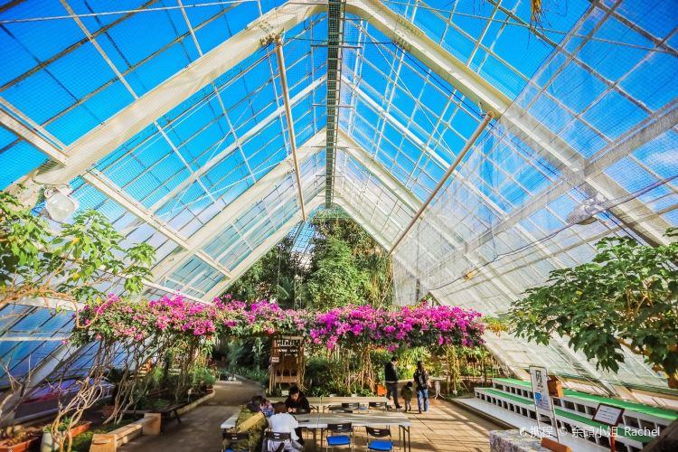 Hakodate Tropical Botanical Garden4