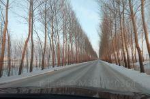 三肇区域的路面现在就这样,建议大家滑冰出行!