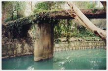 武康很稀有的两座古桥