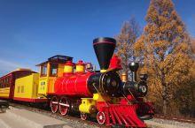 乘森林火车探秘莫尔道嘎原始林海 从森林公园站出发,经过沿途的四个站点,每站会停靠15分钟到20分钟,