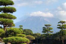 仙气十足的仙岩园,一定要去! 很同学去过鹿儿岛,坐过轮渡,爬过火山,但是却错过了鹿儿岛最仙的仙巌园,